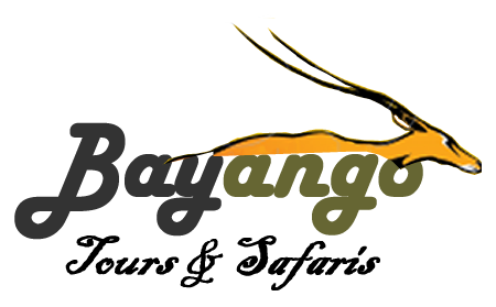 Bayango_Tours_Safaris-logo