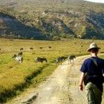 5_Days_Masai_Mara,_Lakes_Nakuru,_Naivasha_&_Hells_Gate_Safari