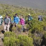 6_Days_Kilimanjaro_Climbing_Rongai_Route