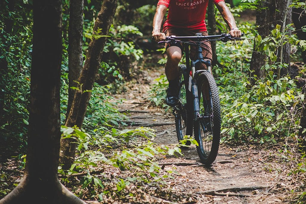Mountain biking through forest