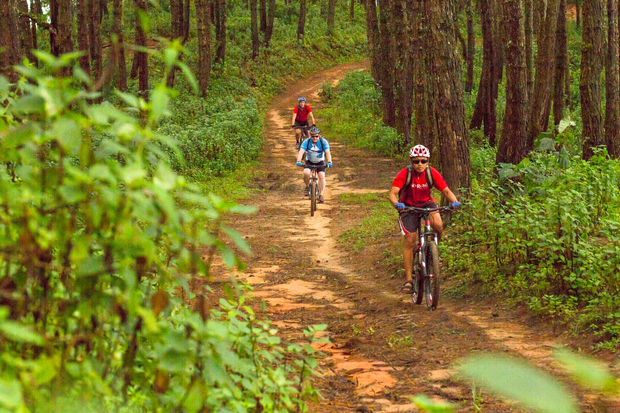 Group mountain biking in Thailand